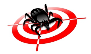 дезинсекция; обработка от клопов; тараканов; муравьев; Челябинск; насекомое; цена; выведение; летать; помещение; склад; стоимость; травление; уничтожить; услуга